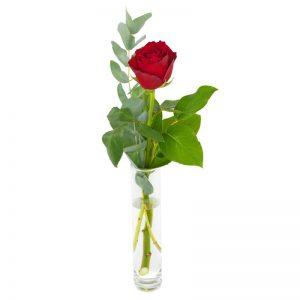 Én rød rose fra nettblomst.no