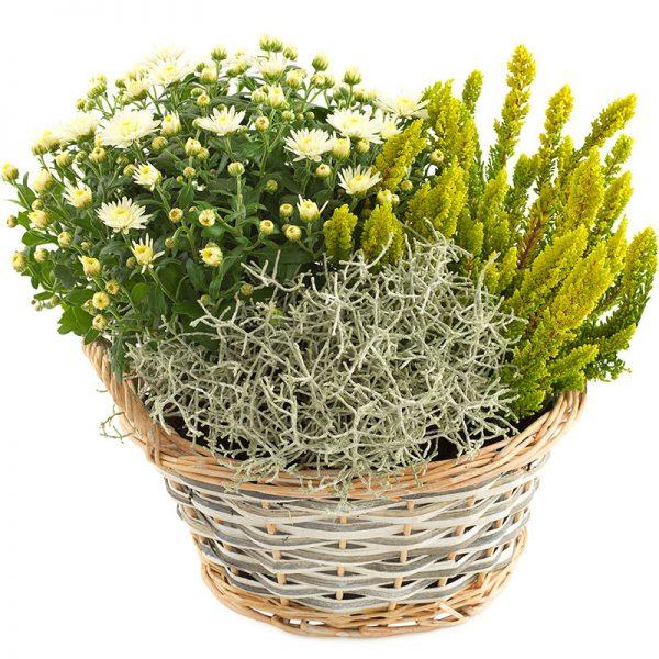 """""""Hvit høst"""" blomsterdekorasjon fra nettblomst.no"""