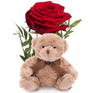 Romantisk rose med bamse hos nettblomst.no